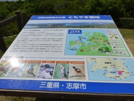 ともやま公園展望台33