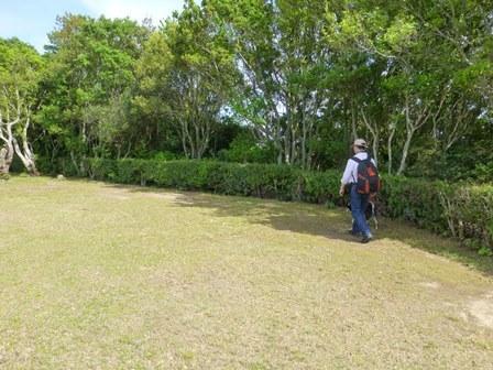 ともやま公園展望台40