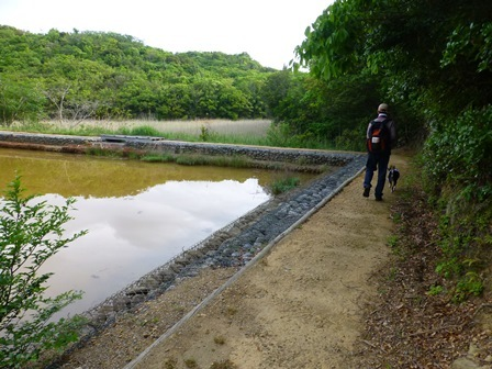アクアヴィラ朝のお散歩 (3)