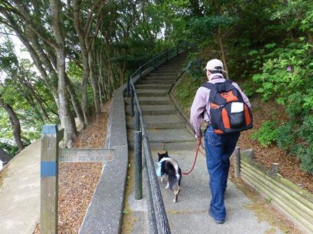 アクアヴィラ朝のお散歩 (9)