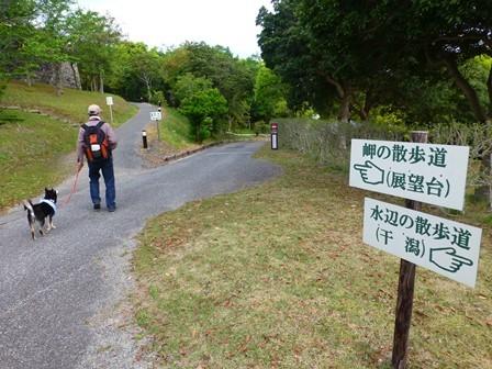 アクアヴィラ朝のお散歩 (16)