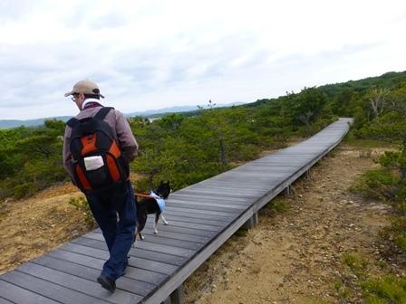 アクアヴィラ朝のお散歩 (23)