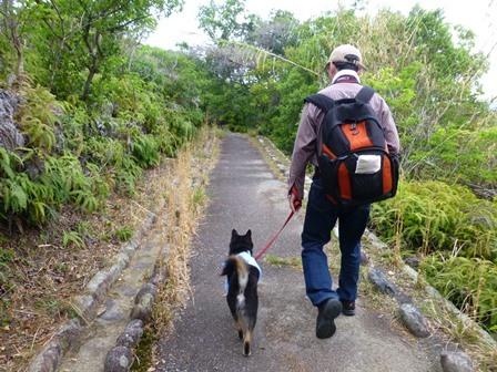 アクアヴィラ朝のお散歩 (35)