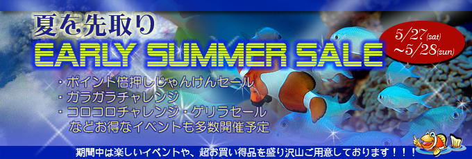 banner_earlysummer-2a5cc.jpg