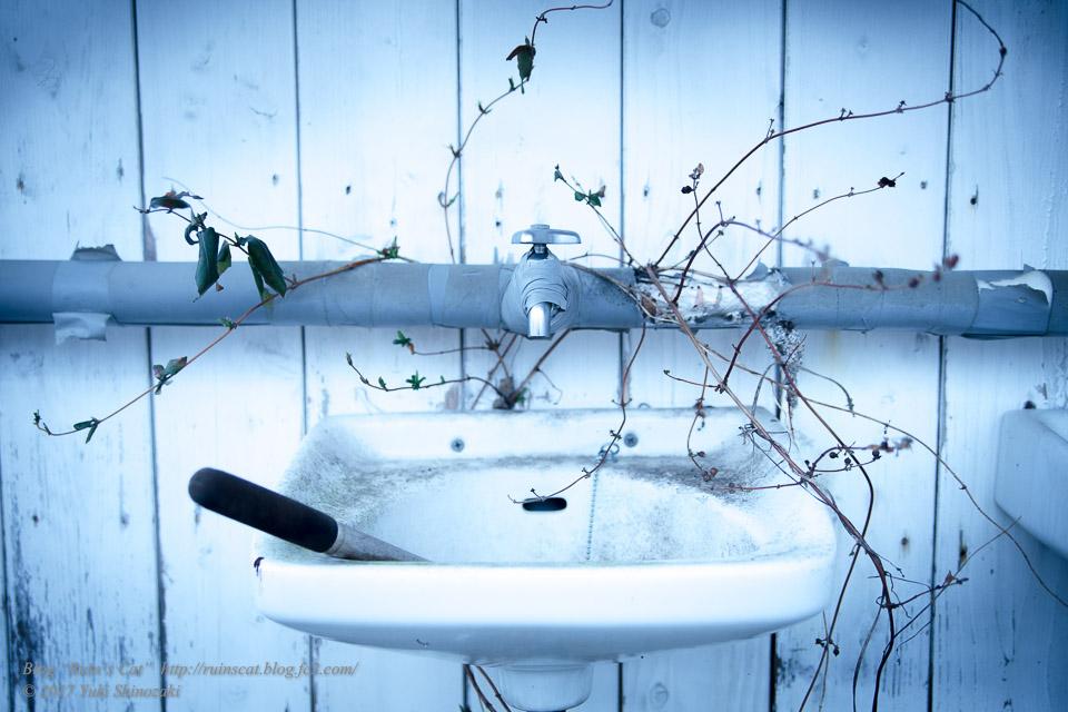 【廃墟】萬治キノコ牧場_トイレ洗面台