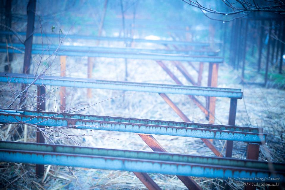 【廃墟】萬治キノコ牧場_謎のレール状構造物