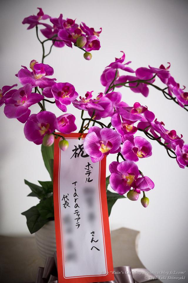 【廃墟】S・K亭_祝いの花