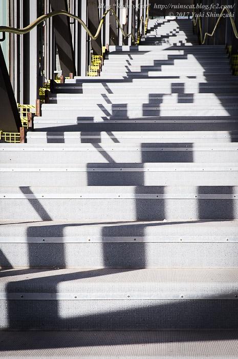 【廃墟】スパガーデン 湯~とぴあ(スパリゾート大鰐)_長階段