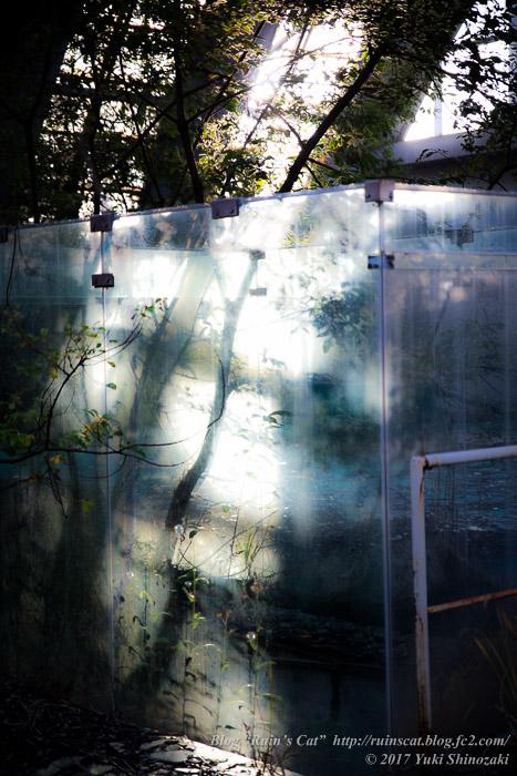 【廃墟】スパガーデン 湯~とぴあ(スパリゾート大鰐)_硝子の長方形