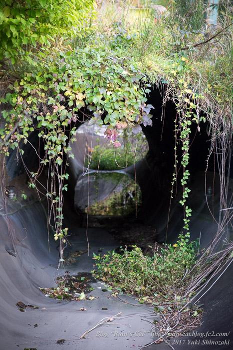 【廃墟】スパガーデン 湯~とぴあ(スパリゾート大鰐)_スプラッシュキャニオン右コーストンネル