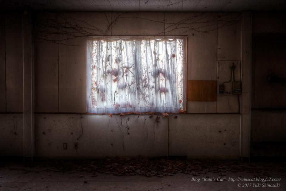 【廃墟】指宿ソーイング_枯草の窓
