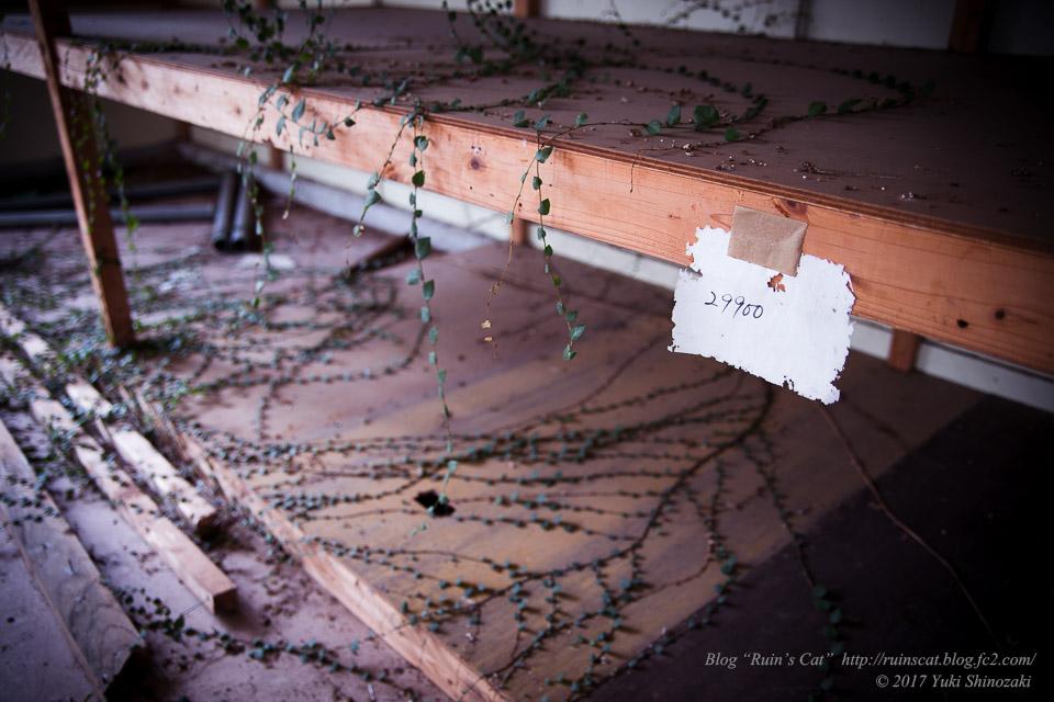 【廃墟】指宿ソーイング_謎の数字