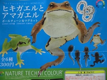 ガチャ:ヒキガエルとアマガエル1