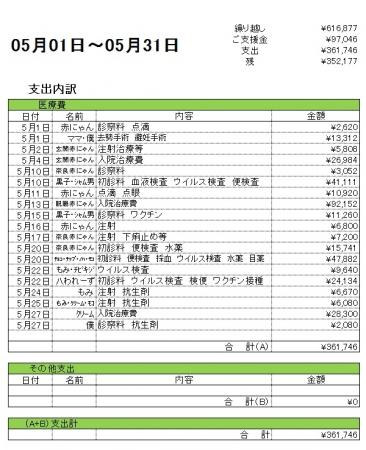 201705支出内訳