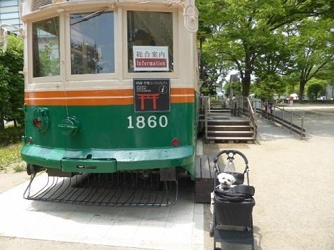 P1140471 (640x480)