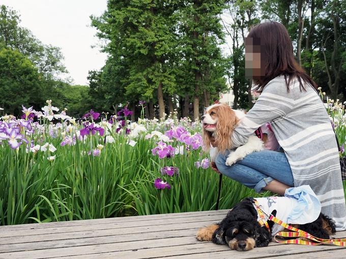 blogP6110926.jpg