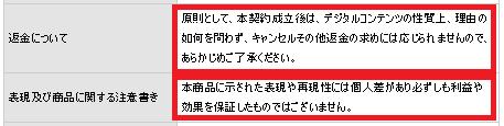 チームフィーバージャパン5
