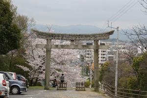 屋島神社8