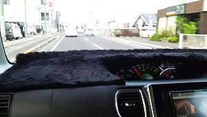 ポニョ子Car5