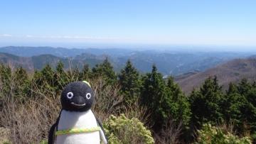 20170423-武甲山 (7)