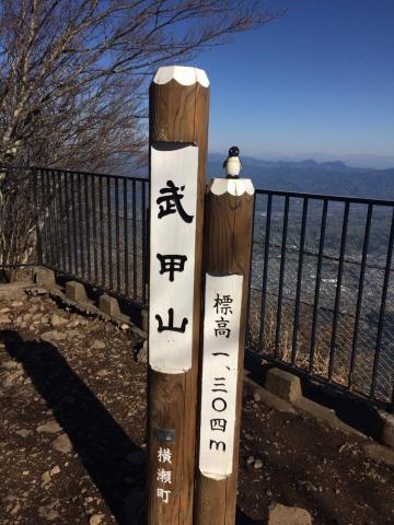 20170423-武甲山 (25)