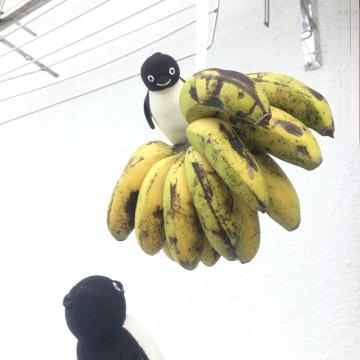 20170504-バナナ (1)-加工