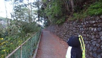 20170430-雲取山 (4)