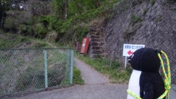 20170430-雲取山 (3)