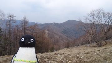 20170430-雲取山 (20)
