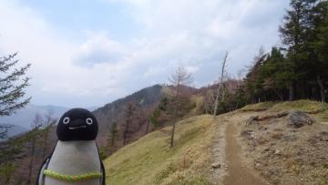 20170430-雲取山 (26)