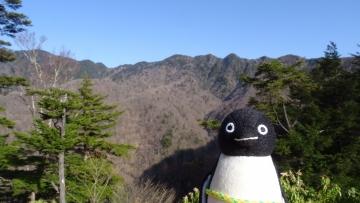 20170430-雲取山 (64)