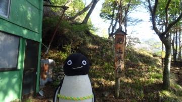 20170505-丹沢 (6)