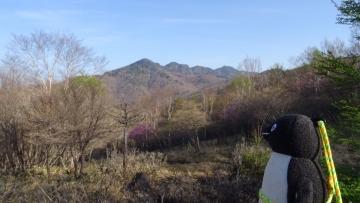 20170521-袈裟丸山 (5)