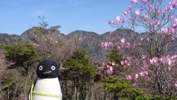 20170521-袈裟丸山 (14)
