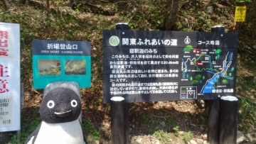 20170521-袈裟丸山 (28)