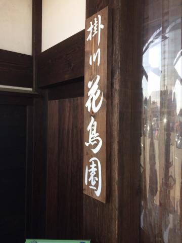20170617-掛川花鳥園 (2)