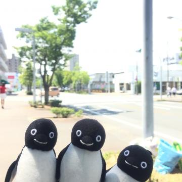20170617-掛川花鳥園 (1)