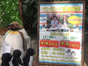 20170617-掛川花鳥園 (68)