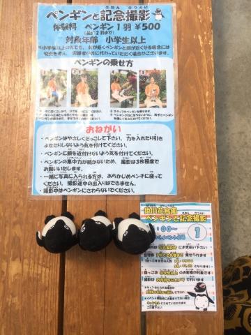 20170617-掛川花鳥園 (69)