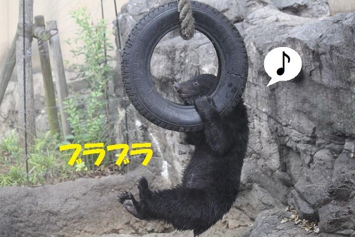 76 - コピー