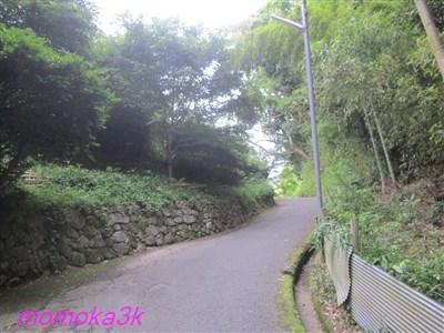 miwasan 053