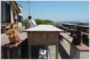 H29043004漁港食堂だいぼ