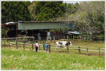 H29050305秋元牧場