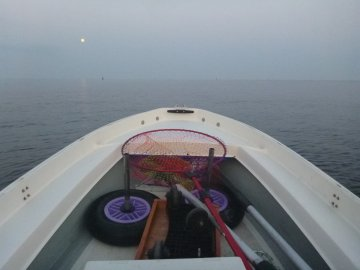 (2)波穏やかー