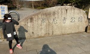 華蔵寺公園1