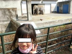 桐生動物11