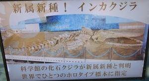 生命の海無料14-1