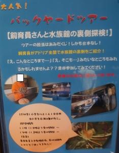 竹島バック5-1