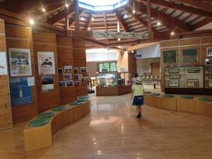 森の学習館2