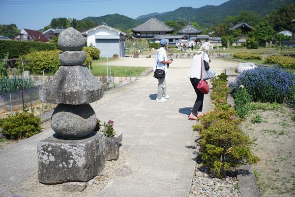 taika-DSC04427.jpg